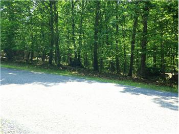 Lot 848 Candlewick Way, Lackawaxen, PA