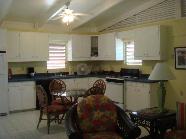 Guest House Kitchen with Tons of Cabinet Space