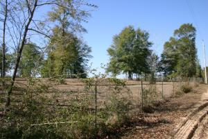 Adjoining neighbors pasture/farmland