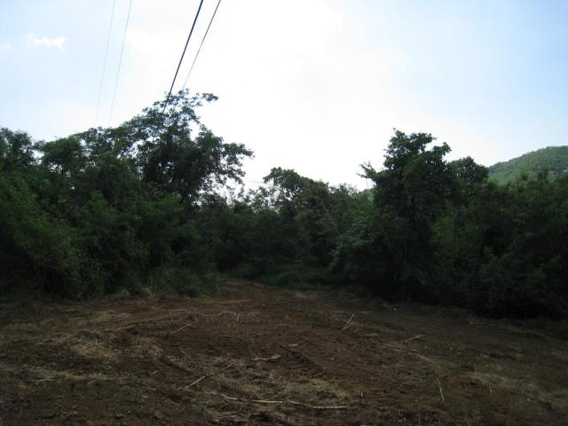 Lot is Cleared and Ready to Build