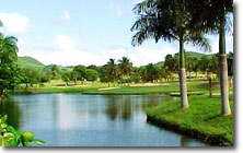 Golf at famous Carambola is only minutes away