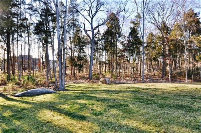 Backyard is flat with mature landscaping