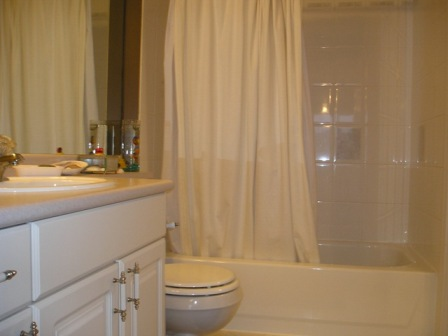 Main bathroom continued