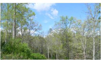 13.63 Acres  Owl Creek / Pat Road, Hiawassee, GA